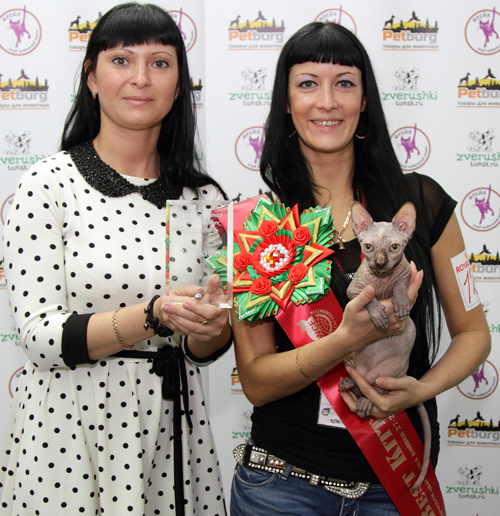 winner Baby Rah Cattery